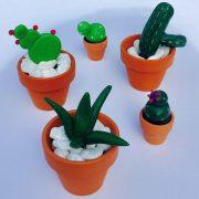 cactus Fimo2